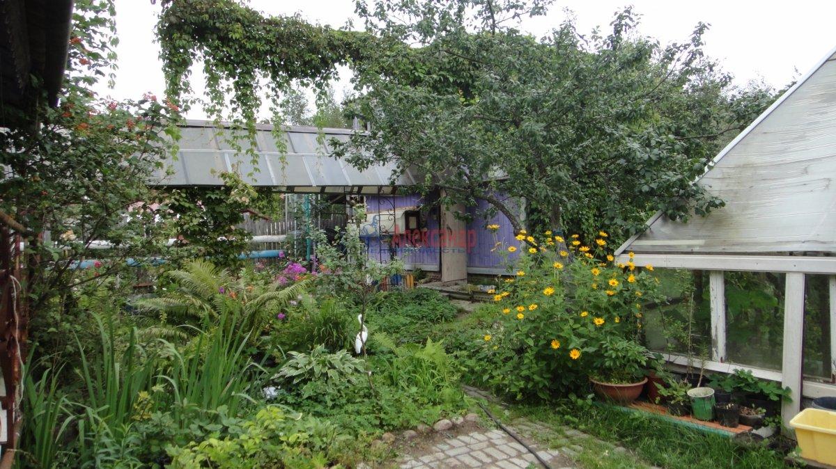 Садовый дом (55м2) на продажу — фото 7 из 24