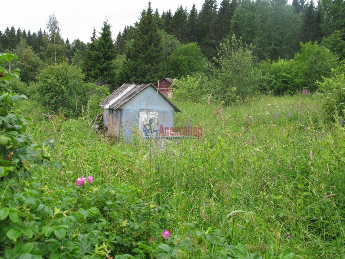 Садовый дом (50м2) на продажу — фото 18 из 27