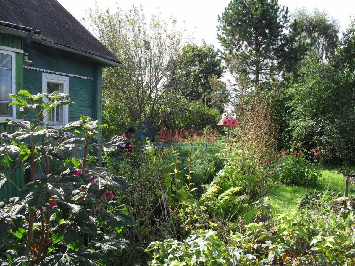 Жилой дом (65м2) на продажу — фото 2 из 10