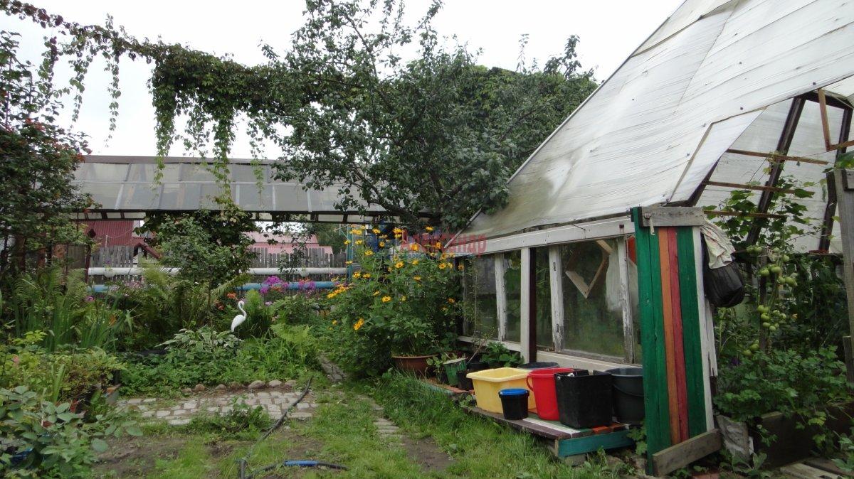 Садовый дом (55м2) на продажу — фото 8 из 24