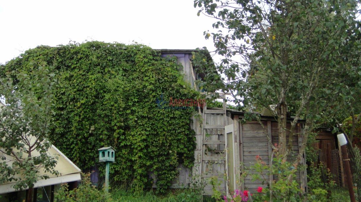 Садовый дом (55м2) на продажу — фото 12 из 24