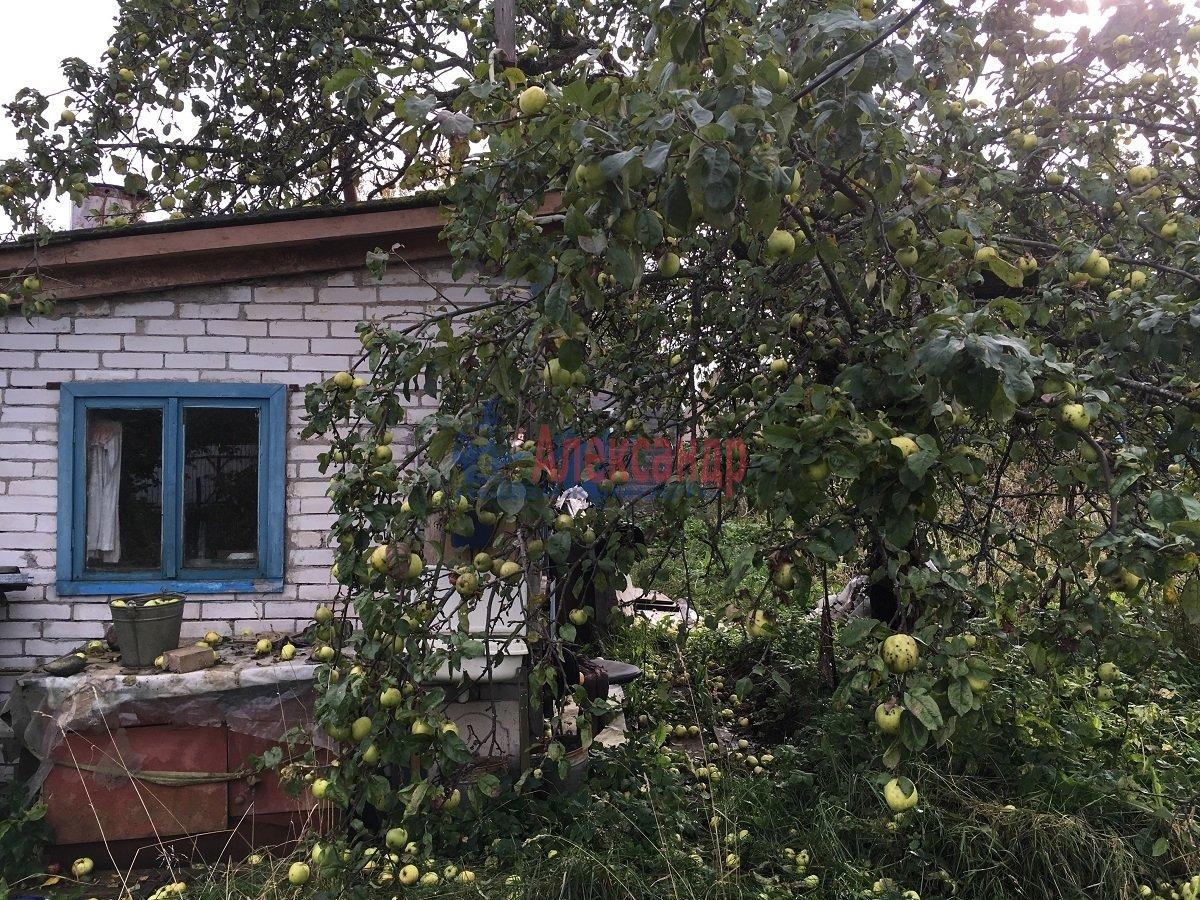 Садовый дом (50м2) на продажу — фото 4 из 9