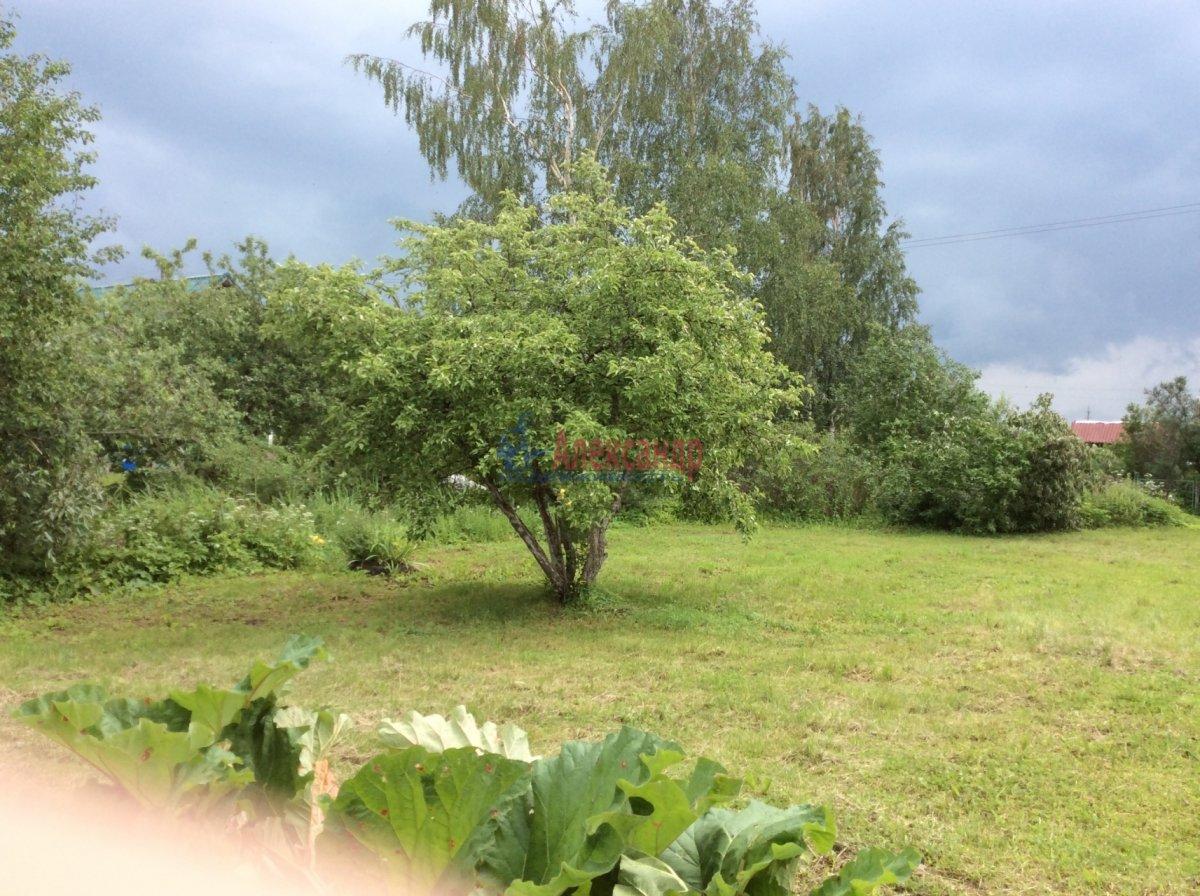 Садовый дом (50м2) на продажу — фото 3 из 13