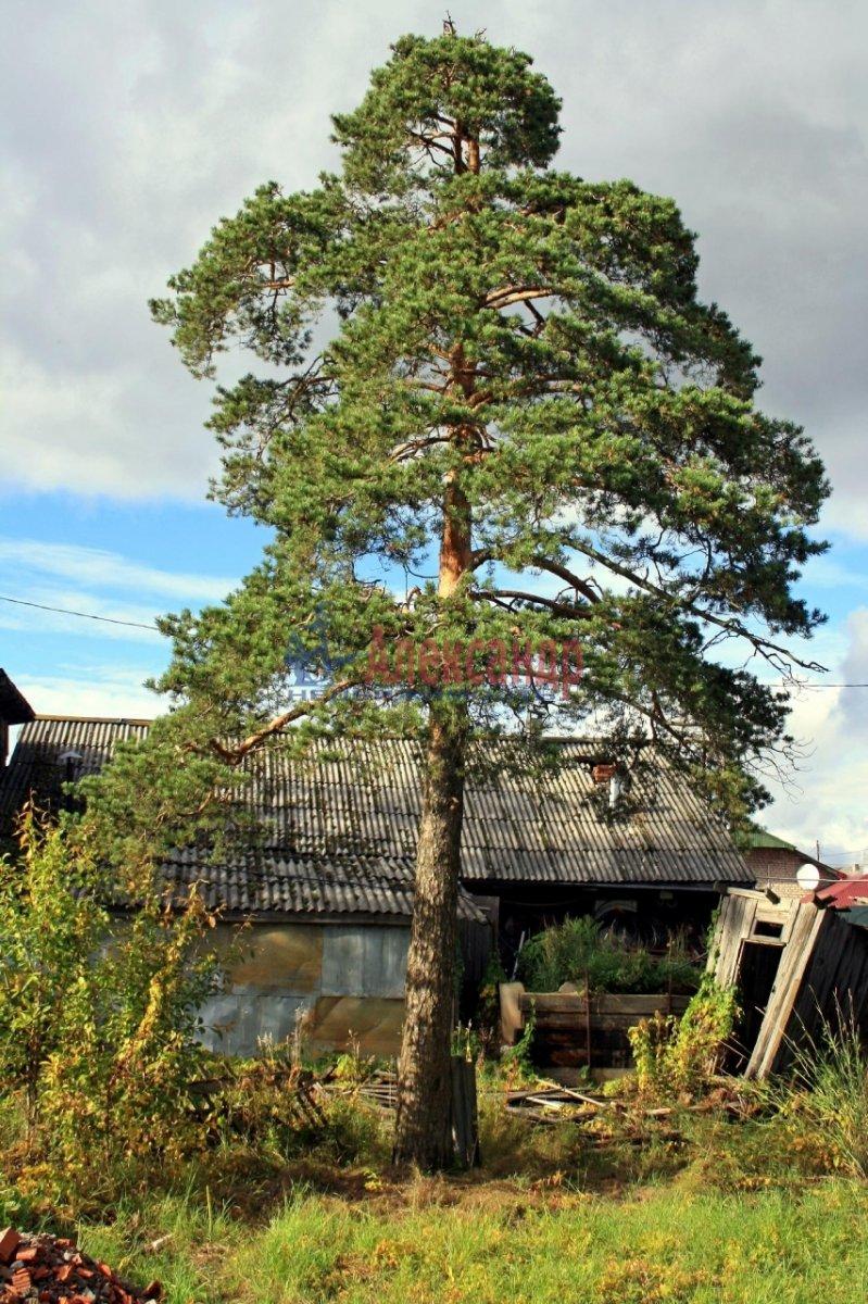 Жилой дом (168м2) на продажу — фото 6 из 19