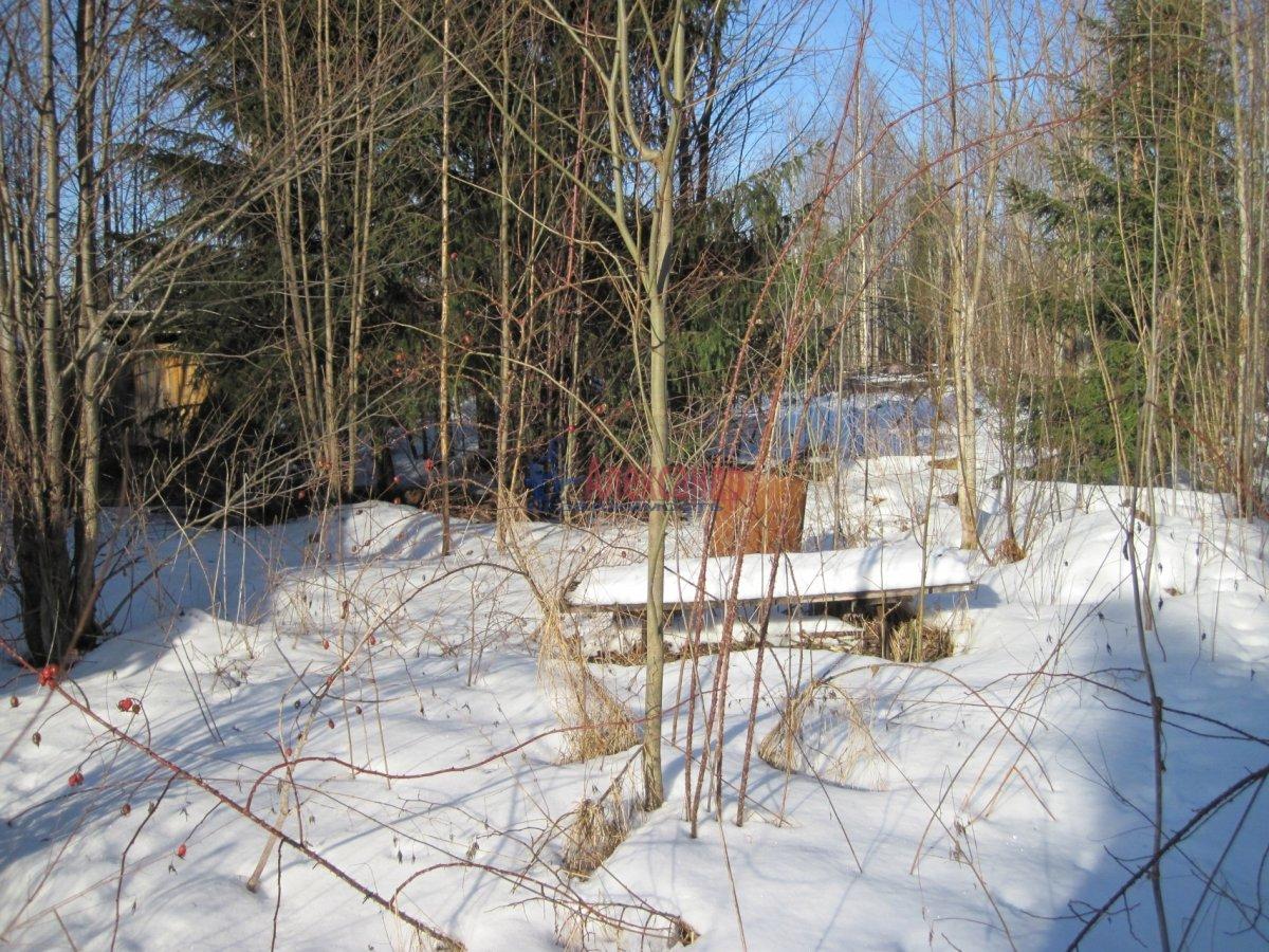 Садовый дом (12м2) на продажу — фото 11 из 42