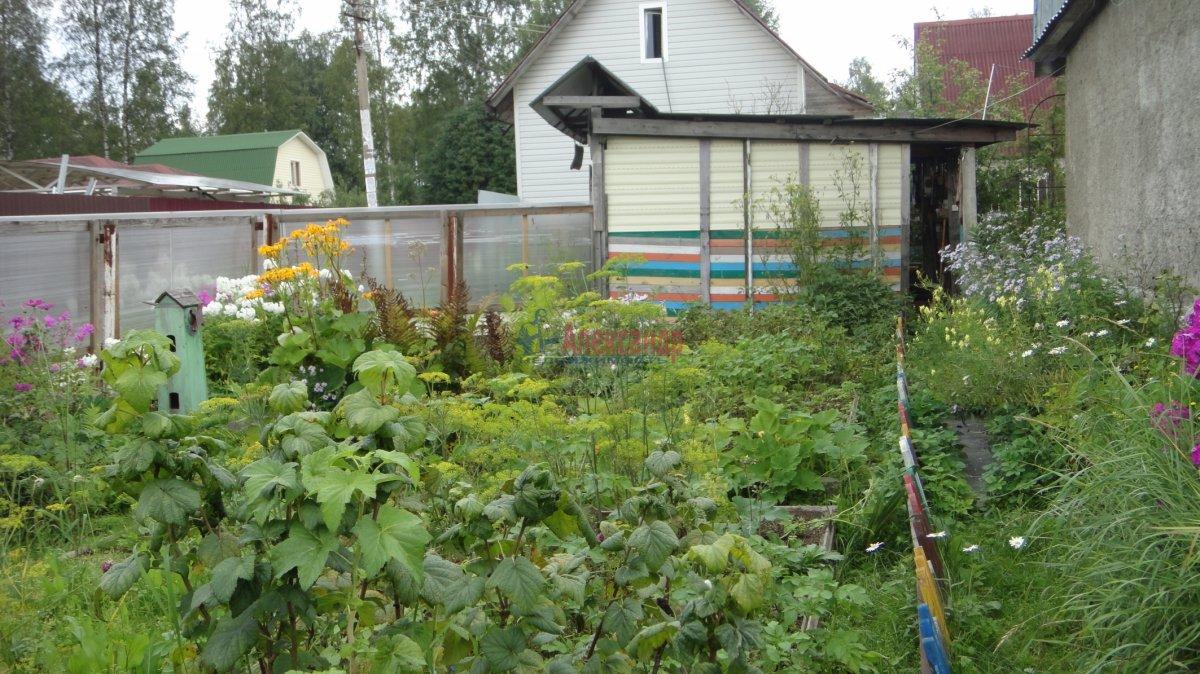 Садовый дом (55м2) на продажу — фото 13 из 24