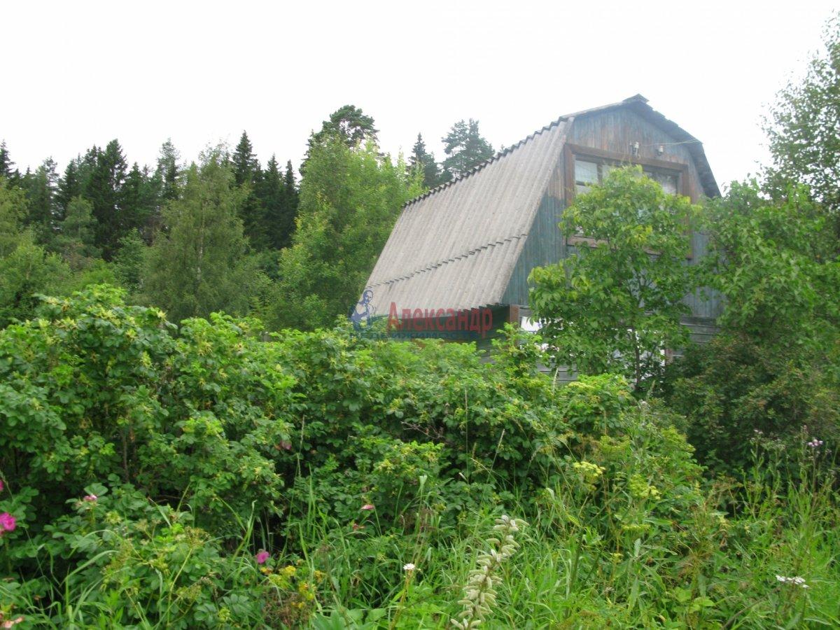 Садовый дом (50м2) на продажу — фото 23 из 27