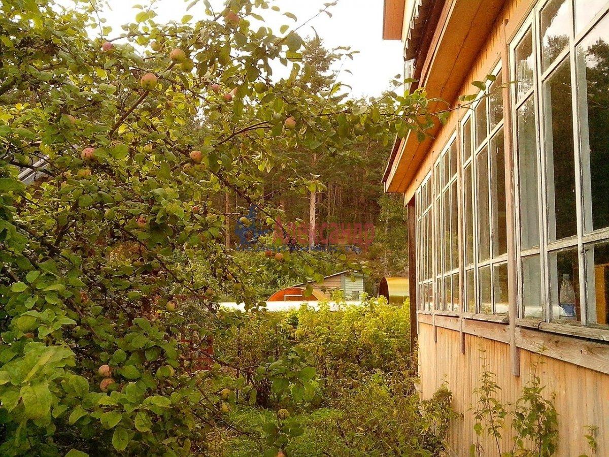 Дачный дом (48м2) на продажу — фото 3 из 9