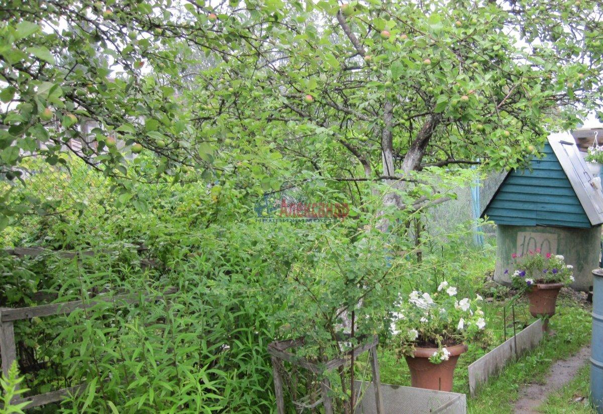 Садовый дом (101м2) на продажу — фото 29 из 37