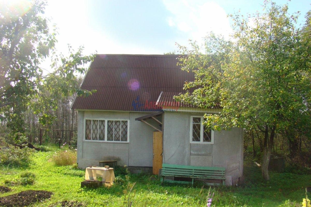 Садовый дом (48м2) на продажу — фото 2 из 3