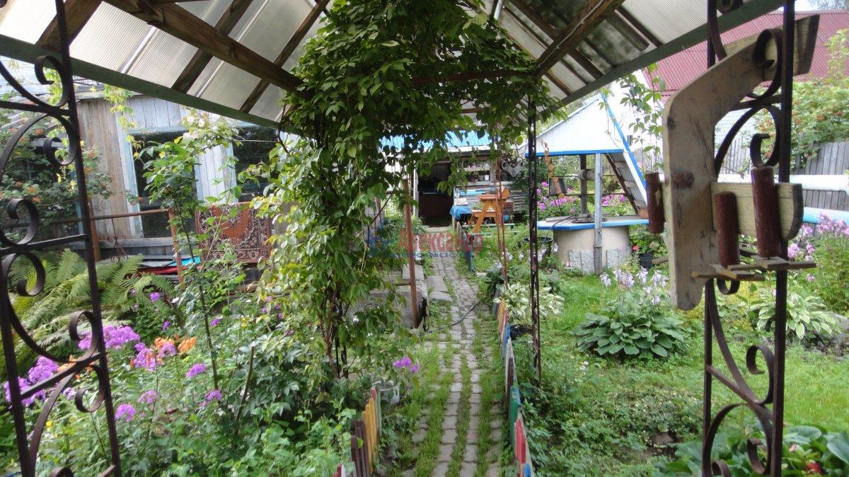 Садовый дом (55м2) на продажу — фото 16 из 24