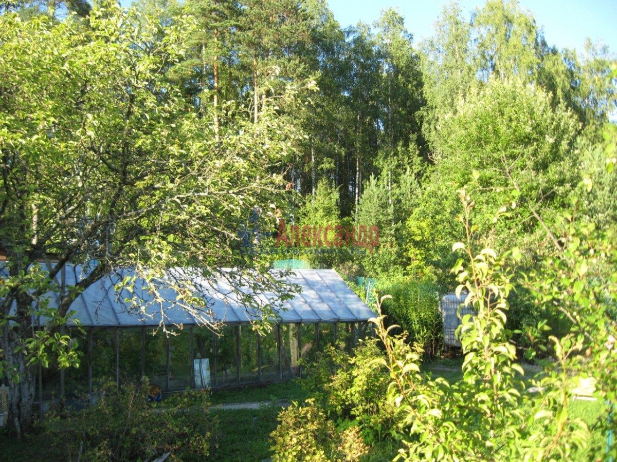 Дачный дом (45м2) на продажу — фото 11 из 11