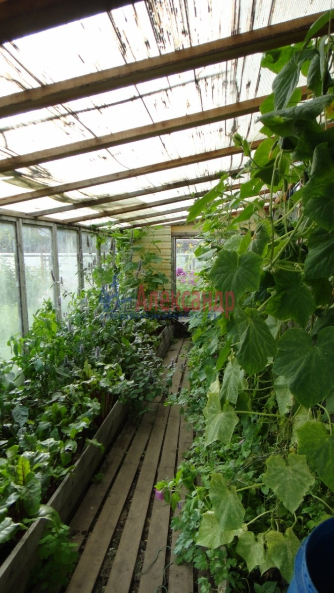 Садовый дом (55м2) на продажу — фото 18 из 24